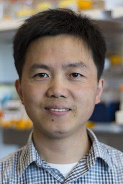 Ming Li, Ph.D.
